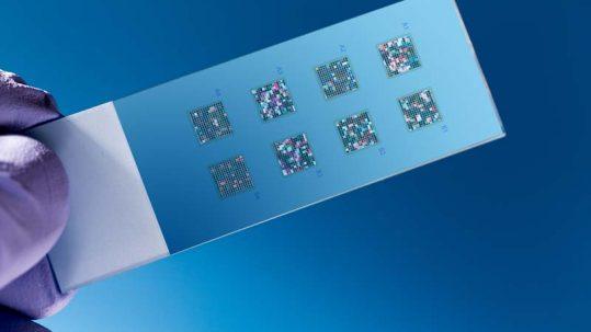 nanobiose biosensors
