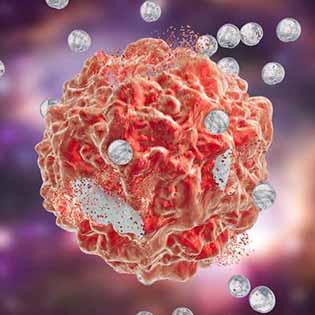 nanobiose nanodrug candidates